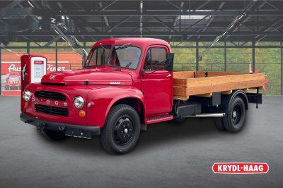 Dodge Sonstiges D 203 L / Sammlerstück / bei Alois Krydl GmbH in